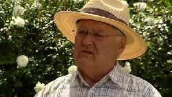 Harold Bishop in Neighbours Episode 5211