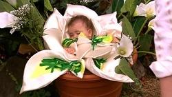 Kerry Mangel (baby) in Neighbours Episode 5235