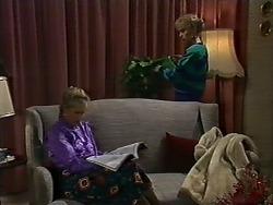 Amanda Harris, Jane Harris in Neighbours Episode 0562