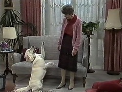 Bouncer, Nell Mangel in Neighbours Episode 0614
