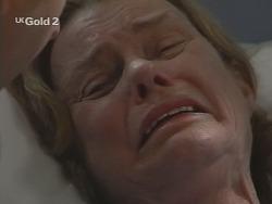 Helen Daniels in Neighbours Episode 2693