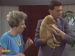 Eileen Clarke, Des Clarke in Neighbours Episode 0633