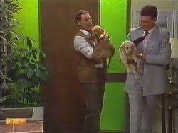 Malcolm Clarke, Des Clarke in Neighbours Episode 0634