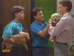 Mike Young, Tony Romeo, Des Clarke in Neighbours Episode 0635