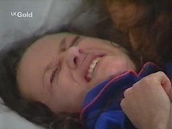 Cody Willis in Neighbours Episode 2579
