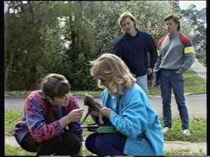 Nikki Dennison, Jane Harris, Scott Robinson, Mike Young in Neighbours Episode 0374