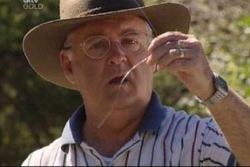 Harold Bishop in Neighbours Episode 3816