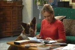 Steph Scully, Harvey in Neighbours Episode 3846