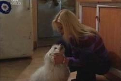 Bob, Dee Bliss in Neighbours Episode 3867