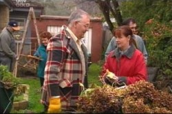 Harold Bishop, Susan Kennedy in Neighbours Episode 3884
