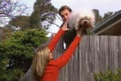 Steph Scully, Joel Samuels, Bob in Neighbours Episode 3895