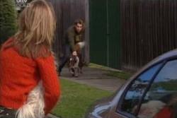Steph Scully, Bob, Joel Samuels, Harvey in Neighbours Episode 3895