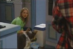 Steph Scully, Harvey in Neighbours Episode 3906