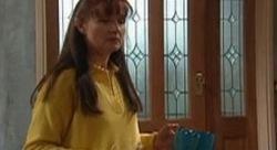 Susan Kennedy in Neighbours Episode 3911