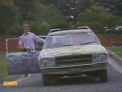 Henry Ramsay in Neighbours Episode 0679