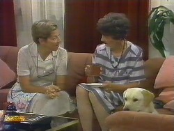 Eileen Clarke, Nell Mangel, Bouncer in Neighbours Episode 0681