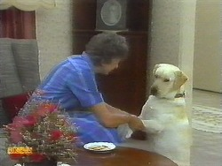 Nell Mangel, Bouncer in Neighbours Episode 0697