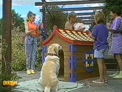 Melanie Pearson, Bouncer, Henry Ramsay, Katie Landers, Lucy Robinson in Neighbours Episode 0719