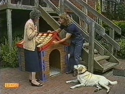 Nell Mangel, Henry Ramsay, Bouncer in Neighbours Episode 0722