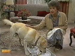 Bouncer, Nell Mangel in Neighbours Episode 0733