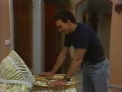 Stephen Gottlieb in Neighbours Episode 1839