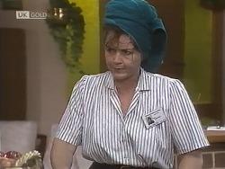 Pam Willis in Neighbours Episode 1845