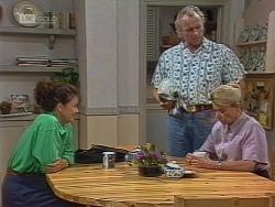 Pam Willis, Jim Robinson, Helen Daniels in Neighbours Episode 1861