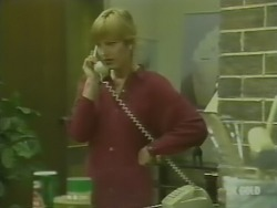 Andrea Townsend in Neighbours Episode 0238