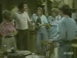 Helen Daniels, Max Ramsay, Shane Ramsay, Madge Bishop, Danny Ramsay in Neighbours Episode 0239