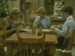 Shane Ramsay, Madge Bishop, Danny Ramsay in Neighbours Episode 0244