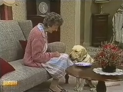 Nell Mangel, Bouncer in Neighbours Episode 0737