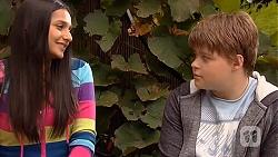 Rani Kapoor, Callum Jones in Neighbours Episode 6436