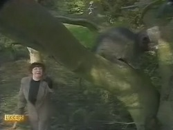Edith Chubb in Neighbours Episode 0803