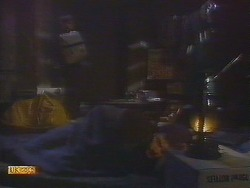 Todd Landers, Skinner in Neighbours Episode 0854