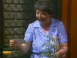 Edith Chubb in Neighbours Episode 0883