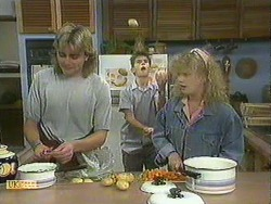 Nick Page, Todd Landers, Sharon Davies in Neighbours Episode 0901