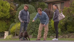 Lucas Fitzgerald, Bossy, Kyle Canning, Jade Mitchell in Neighbours Episode 6491