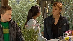 Callum Rebecchi, Rani Kapoor, Harley Canning in Neighbours Episode 6498