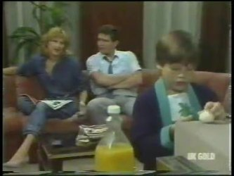 Andrea Townsend, Des Clarke, Bradley Townsend in Neighbours Episode 0224