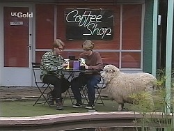 Brett Stark, Billy Kennedy, Casserole the sheep in Neighbours Episode 2490