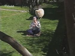 Karl Kennedy, Casserole the sheep in Neighbours Episode 2506
