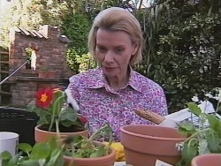 Helen Daniels in Neighbours Episode 2510