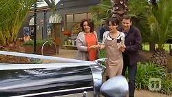 Francesca Villante, Vanessa Villante, Lucas Fitzgerald in Neighbours Episode 6531