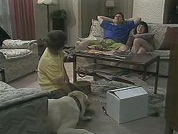Bouncer, Toby Mangel, Joe Mangel, Kerry Bishop in Neighbours Episode 1122