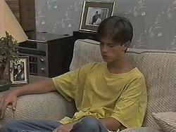 Todd Landers in Neighbours Episode 1152