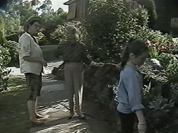Dorothy Burke, Helen Daniels, Lochy McLachlan in Neighbours Episode 1155