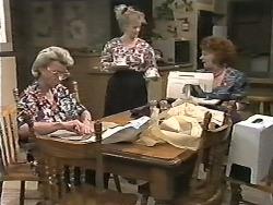 Helen Daniels, Sharon Davies, Gloria Lewis in Neighbours Episode 1165