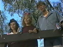 Tanya Walsh, Sharon Davies, Ryan McLachlan in Neighbours Episode 1170