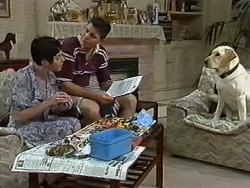 Kerry Bishop, Joe Mangel, Bouncer in Neighbours Episode 1172