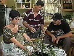 Kerry Bishop, Joe Mangel, Matt Robinson in Neighbours Episode 1183